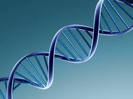 James Dewey Watson: Come la scoperta del dna ha rivoluzionato la nostra vita