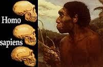 Telmo Pievani: Homo Sapiens