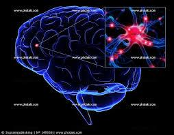 Gian Michele Ratto: Una finestra con vista: la vita segreta del cervello