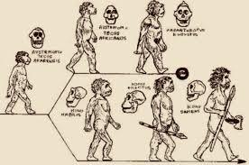 Robert Sapolsky:  Behavioral Evolution (Lezione 2)