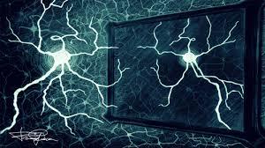 Corrado Sinigaglia: Il cervello che agisce e i neuroni a specchio