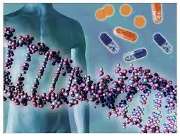 Irene Bozzoni: Le nuove frontiere dell'era genomica: oltre i dogmi del passato