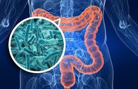 Eric Alt et al.: Friends with Benefits: The Human Microbiome