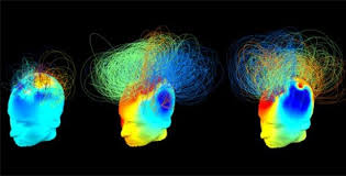 Steven Pinker: The Human Brain