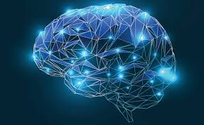 Gianvito Martino: Siamo il nostro cervello?
